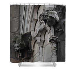 Notre Dame Grotesques Shower Curtain