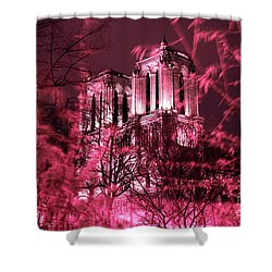 Notre Dame In The Distance Shower Curtain