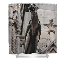 Rain Spouting Gargoyle. Shower Curtain