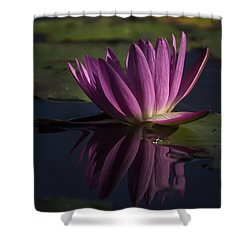 November Lily Shower Curtain