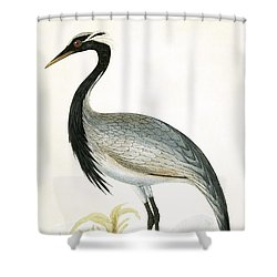 Numidian Crane Shower Curtain by English School