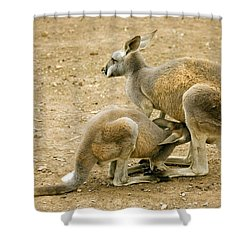 Nursing Time Shower Curtain by Mike  Dawson
