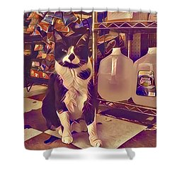 Nyc Bodega Cat Shower Curtain