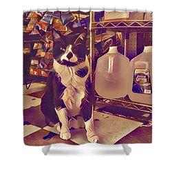 Nyc Bodega Cat Shower Curtain