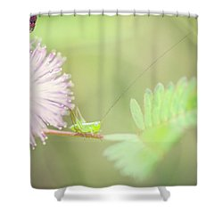 Shower Curtain featuring the photograph Nymph by Heather Applegate