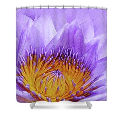 Nymphea Shower Curtain