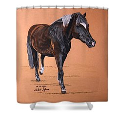 Nyx Shower Curtain by Melita Safran