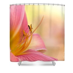 O That Summer Passion Shower Curtain