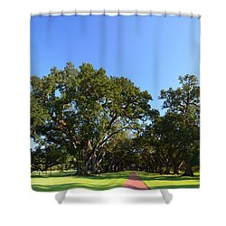 Oak Alley Plantation Panoramic Shower Curtain