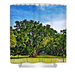 Oak Alley Plantation Shower Curtain by Steve Harrington