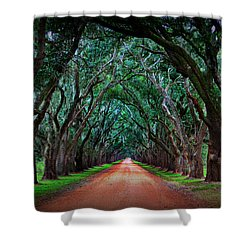 Oak Alley Road Shower Curtain