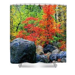 Oak Creek Canyon Red Shower Curtain