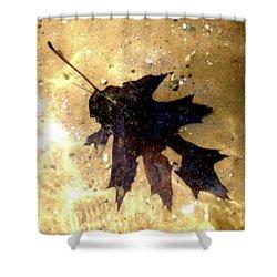Oak Leaf Underwater Shower Curtain by Tara Hutton
