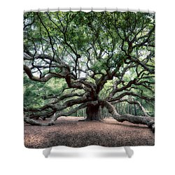 Oak Of The Angels Shower Curtain