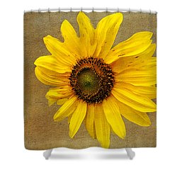 Shower Curtain featuring the photograph Oak Street Sunflower by Tom Singleton