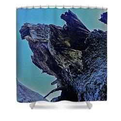 Oak Stump Shower Curtain