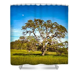 Oak Tree Green Meadow Moon Rising Shower Curtain