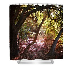 Shower Curtain featuring the photograph Oaken Woodland 2 by Timothy Bulone