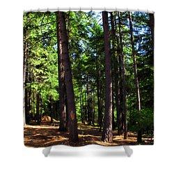 Oakrun Forest Shower Curtain by Joyce Dickens