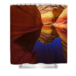 Oasis Shower Curtain by Chad Dutson