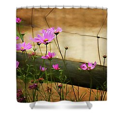 Oasis In The Desert Shower Curtain by Lana Trussell