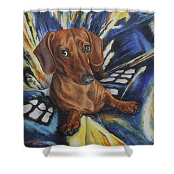 Dachshund Time Lord Shower Curtain