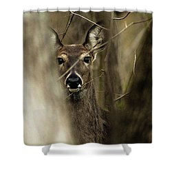 Observed  Shower Curtain by Bruce Patrick Smith