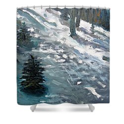 Shower Curtain featuring the painting Observing Snow by Gary Coleman