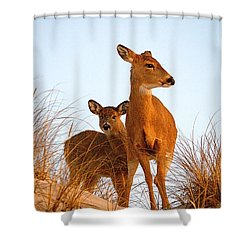 Ocean Deer Shower Curtain by  Newwwman