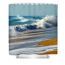 Ocean Delight Shower Curtain by Dianne Cowen