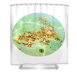 Shower Curtain featuring the photograph Ocean Flowers Oval by Linda Hollis