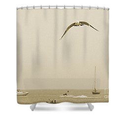 Ocean Fun Shower Curtain