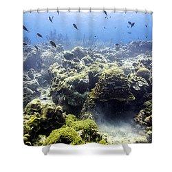 Ocean Light II Shower Curtain