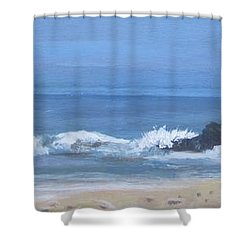 Ocean Meets Jetty Shower Curtain