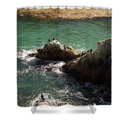 Ocean Rock Near Carmel Shower Curtain