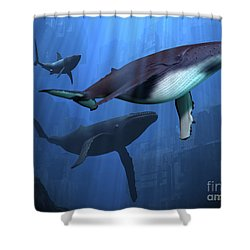 Ocean Ruins Shower Curtain by Corey Ford