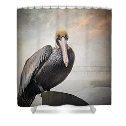 Ocean Springs Pelican Shower Curtain