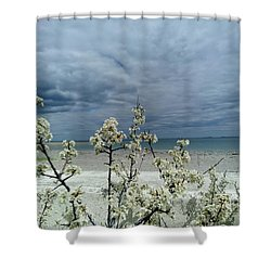 Ocean Spring Shower Curtain