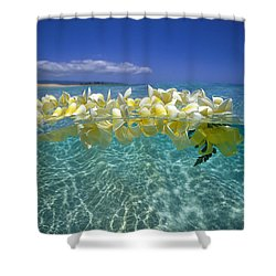 Ocean Surface Shower Curtain