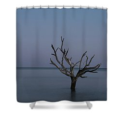 Ocean Tree Shower Curtain
