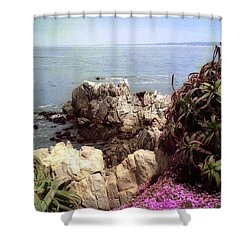 Ocean View Rock And Flowers Shower Curtain