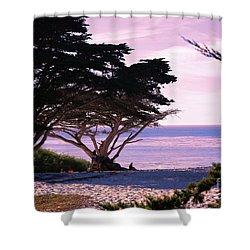 Ocean Views From Carmel Beach  Shower Curtain
