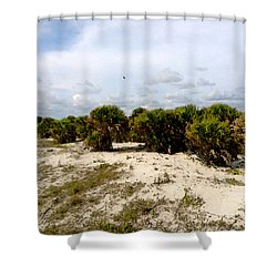 Shower Curtain featuring the painting Oceans Bluff   by Iconic Images Art Gallery David Pucciarelli