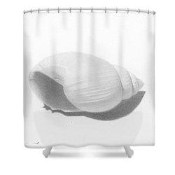 Ocean's Treasure Shower Curtain