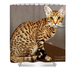 Ocicat Shower Curtain