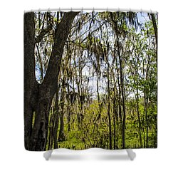Ocklawaha Spanish Moss In The Swamp Shower Curtain