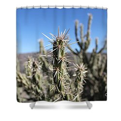 Ocotillo Shower Curtain