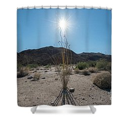 Ocotillo Glow Shower Curtain by Robert Loe