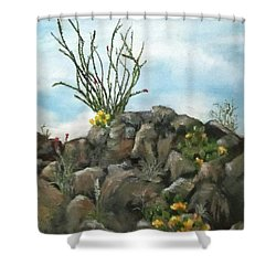 Ocotillo In Bloom Shower Curtain