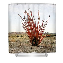 Ocotillo Plant Shower Curtain